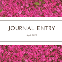 Journal Entry #020
