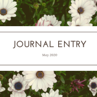 Journal Entry #021